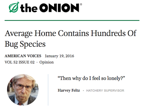 theonion_bugsin houses